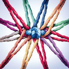 Netzwerkmitglied-werden